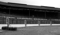 Chelsea - The Shed at Stamford Bridge
